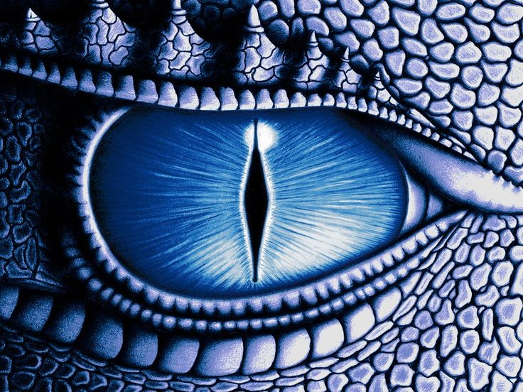 Can We Please Reboot Eragon? | Eragon