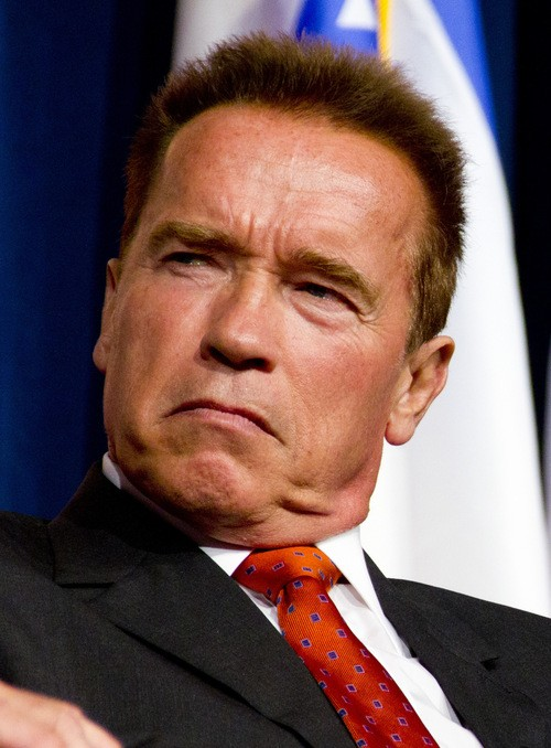 The Terminator Becomes An Internet Moderator!!