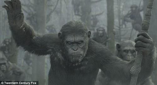 Comic Con Provides First Look At Planet Of The Apes Sequel