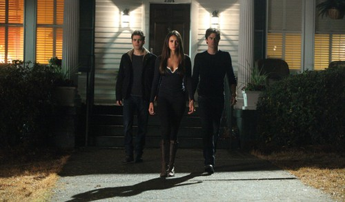 Nina Dobrev Says Elena Is A Woman Divided By Two Brothers