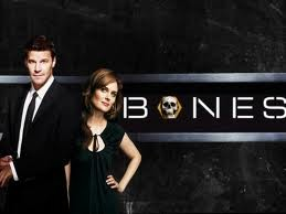 Brennan and Booth Teases New Season Of Bones