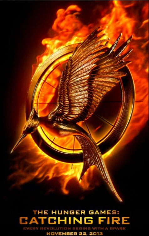 Get Behind Your Victor: Catching Fire Victor Banner Released