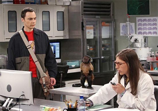 Sheldon Sees A Bit Too Much Of Amy In