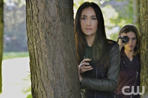 The CW's Nikita Goes Off With A Bang In Series Finale