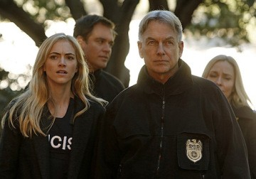 NCIS Newbie Proves A Popular Choice With Fans