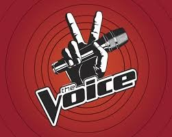 New Celebrity Mentors For The Voice Season 6 Will Help Teams
