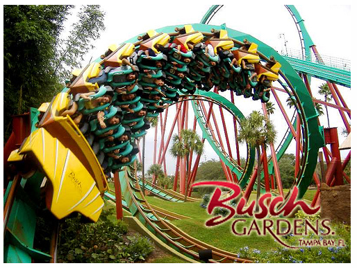 3 People Safely Removed From Busch Gardens Roller Coaster; 13 Remain