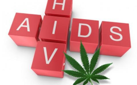 Researchers Have High Hopes In Discovery That Suggests Marijuana Could Stop HIV Progression