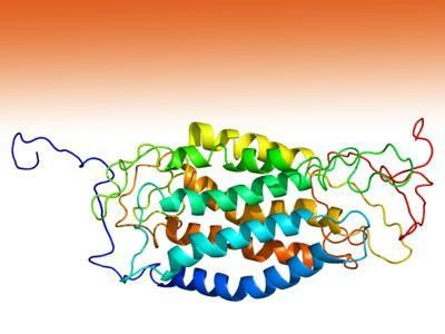 New Research Indicates Gene Therapy May Be An Effective Treatment For HIV