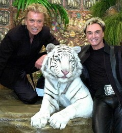 Magicians Siegfried And Roy's White Tiger Mantecore Dies