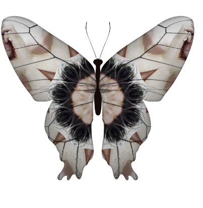 The Butterfly Effect: H&M Launches The #Everconscious Campaign And Asks You To Spread Your Wings With Them