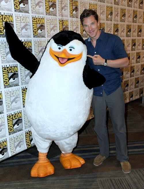 SDCC 2014: Benedict Cumberbatch Steals The Show With First Ever Appearance For 'Madagascar'