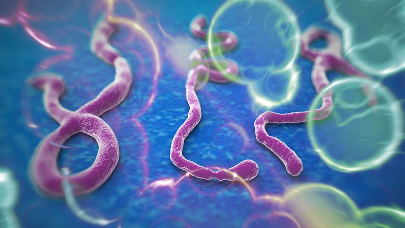 Ebola Diagnosed In United States For The Very First Time | ebola