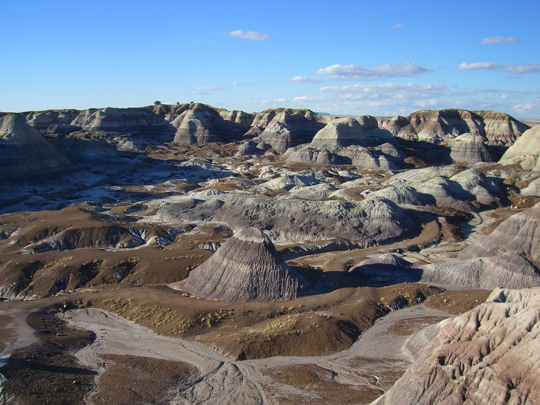 Second Ancient Village Found In Arizona's Petrified Forest | Petrified Forest