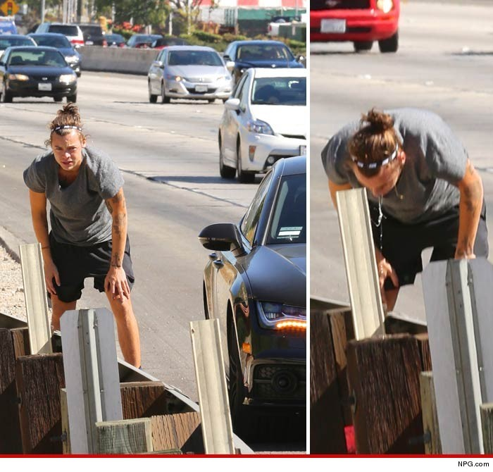 Even Stars Get Hungover: Harry Styles Stops On Highway.....To Puke | harry styles