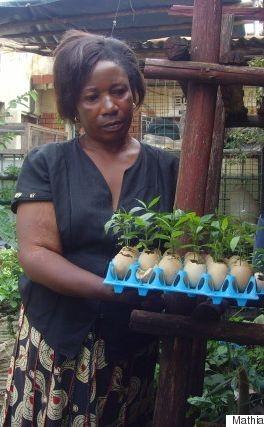 Uganda's Small Sack Gardens Are Growing Big Change | Sack Gardens