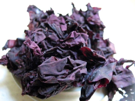 Miraculous New Dulse Seaweed Is Better For You Than Kale And Tastes Like BACON | dulse