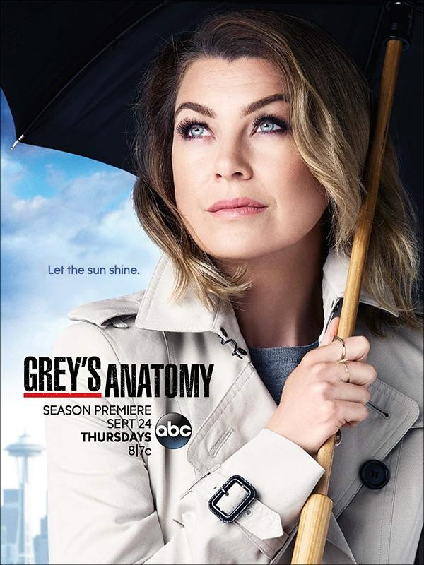 Let Meredith Shine! Grey's Anatomy Gets New Season 12 Poster & Trailer | Grey's Anatomy
