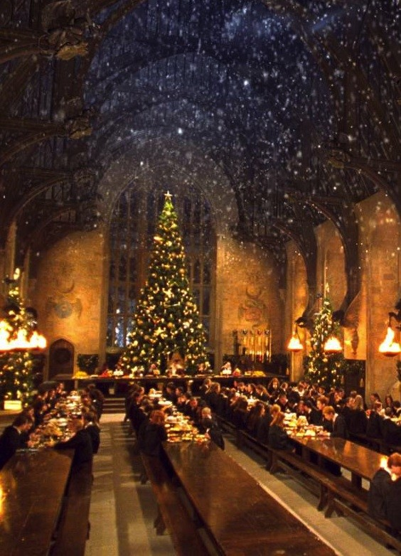 It's A Wizardly Christmas Miracle! Have Dinner At Hogwarts | Dinner