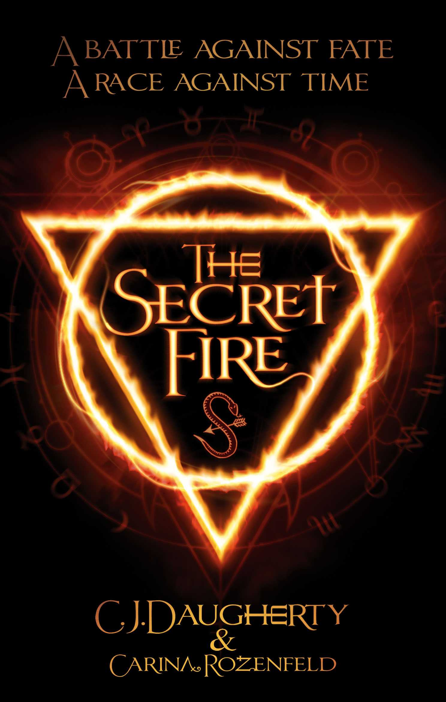 Book Review: The Secret Fire - C.J. Daugherty & Carina Rozenfeld | The Secret Fire