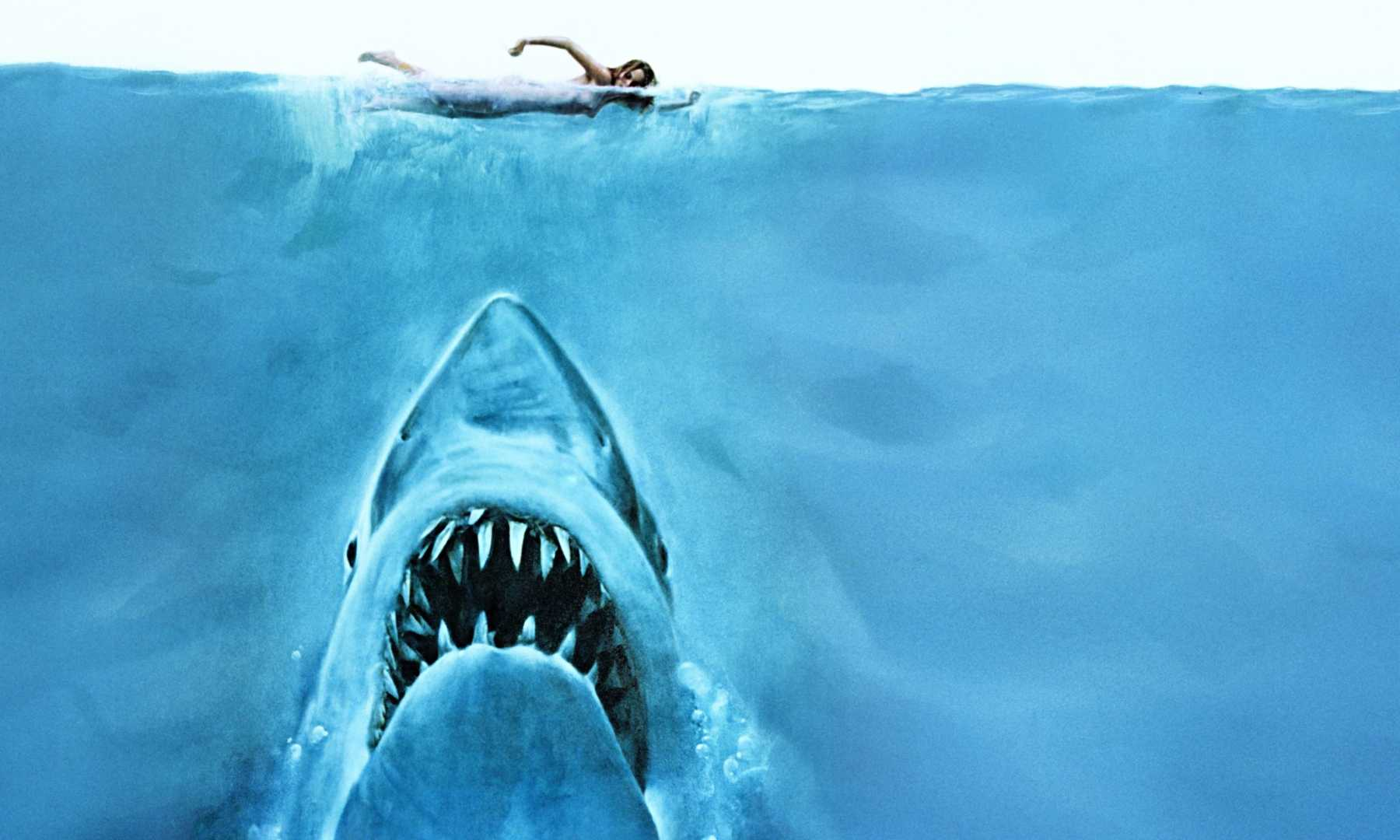 Pop 10 Scenes From 'Jaws' In Chronological Order | Jaws