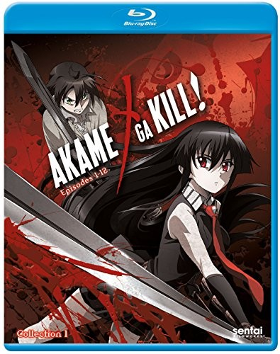 'Akame Ga Kill' Season 1 Review | akame ga kill
