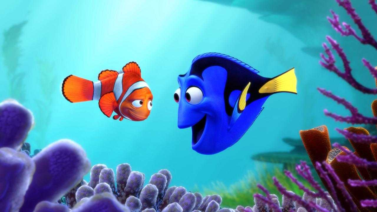 Pixar's New Finding Dory Trailer Introduces A New Adventure | Finding Dory