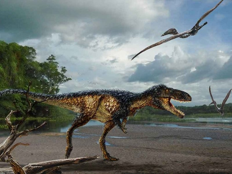 Tiny Tyrannosaur Discovery Provides New Look at Evolution of the T-Rex | Tyrannosaur