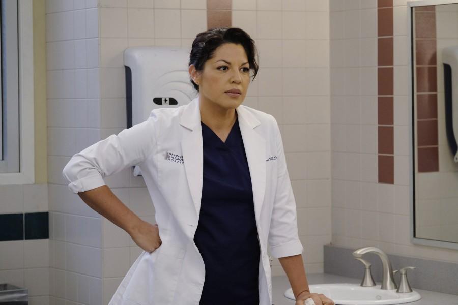Farewell Callie: Sara Ramirez Leaves Grey's Anatomy After 10 Years | Sara Ramirez