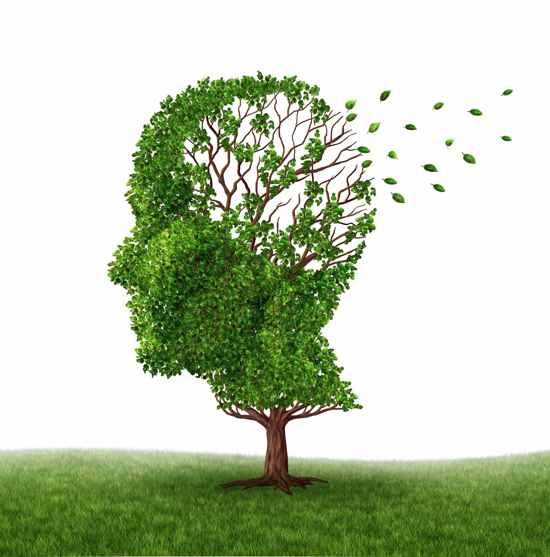 Complex Jobs And Social Ties Help Protect Against Alzheimer's | Alzheimer's