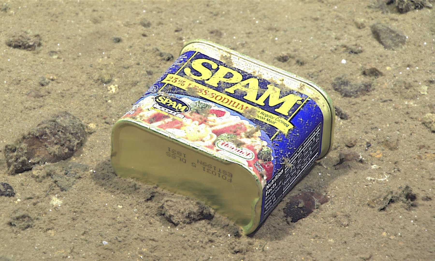 Massive Amounts Of Pollution Discovered In Mariana Trench | Pollution