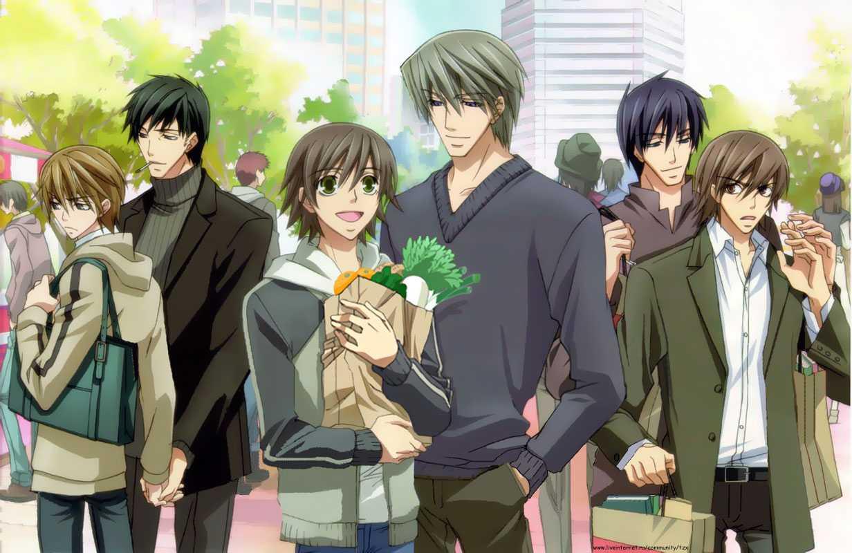Junjou Romantica Season 1 Establishes Conflicted Couples (Review) | Junjou Romantica