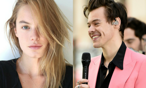 Harry Styles And Camille Rowe: Perfect Partners Or PR? | Harry Styles