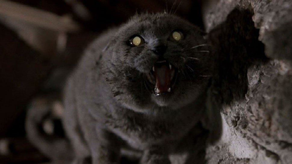 Pet Sematary Adaptation Has Its Directors | Pet Sematary