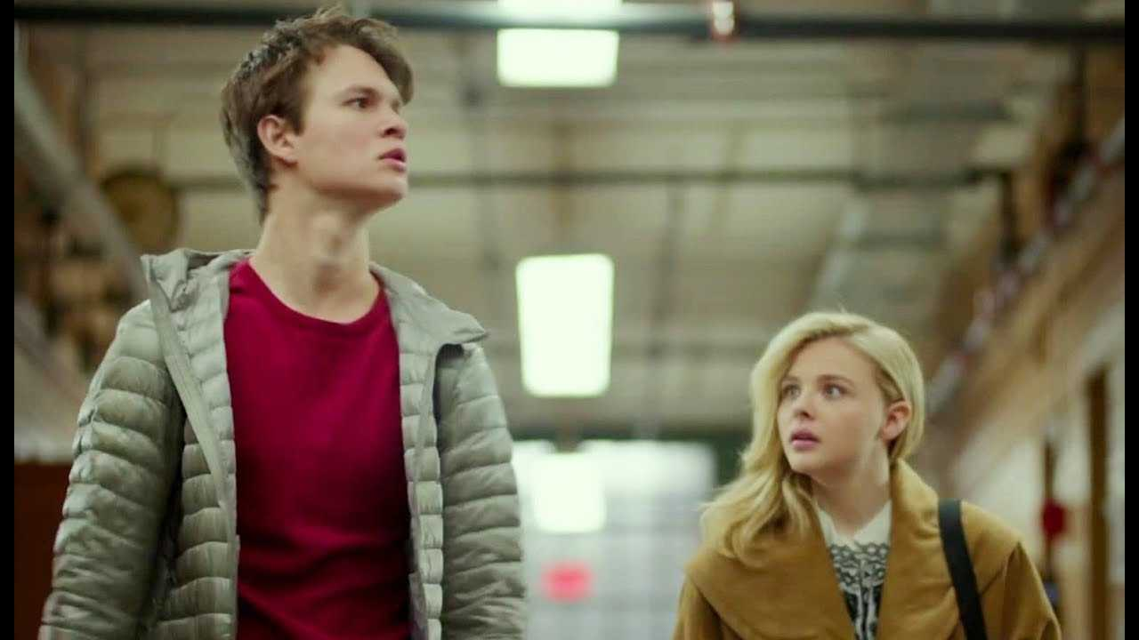 Ansel Elgort To Star In November Criminals  | November Criminals